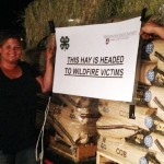 Kate McCloskey, WSU Spokane County 4-H program coordinator, delivers a load of farm feed and hay for fire-affected families in Okanogan County (Photo by Ann Fagerlie/WSU Extension).