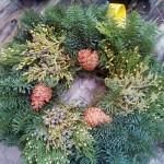 Holiday wreath made with noble fir and western red cedar boughs.