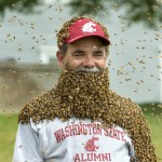 WSU provost Dan Bernardo wears a beard of bees to raise awareness for honey bee research and new research center.