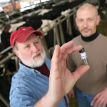 Researching improvements to help dairy farmers, WSU animal scientist Joe Harrison, left, holds a vial of phosphorus-based fertilizer derived from manure (WSU Photo).