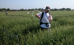 Mike Pumphrey, now wheat breeder at Washington State University, inoculates a test plot of wheat in a Fusarium blight research project at University of Minnesota, circa 2002.