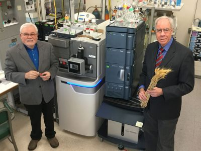 At the USDA Wheat Health, Genetics and Quality Research Unit at Washington State University, senior scientist Robert Bonsall and research leader David Weller use the new Synapt G2-Si HD mass spectrometer to understand the intricate web of chemical signals that drive the health and development of wheat (Seth Truscott/WSU Photos).
