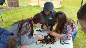 Fourth graders explore and inspect compost at one of the stops on their tour of Heritage Farm in Clark County.