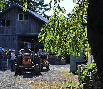 Visitors explore Lazy J Farm in Port Angeles, Wash., during a farm tour event held by WSU Clallam County Extension in partnership with the North Olympic Land Trust. The trust has honored Clallam Extension with its 2017 Farmer of the Year Award.