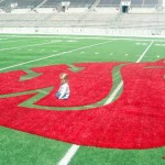 Reagan, daughter of Lynne ('01, Apparel Merch.) and Kurt Williams ('99, Accounting), contemplates the WSU Cougar head on the 50-yard line at Martin Stadium.