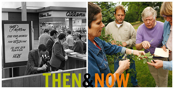 Master Gardeners then and now