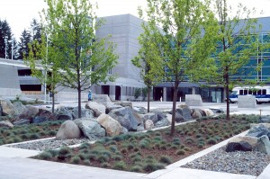 Designed by Tom Berger (1945-2014), the award-winning entrance to the Washington Department of Ecology offices in Lacey, Wash., mingle natural and urban environments.