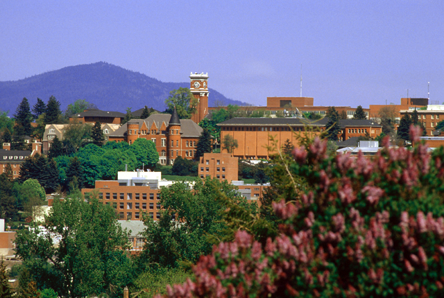 A view of the WSU Pullman campus