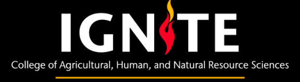 Text: Ignite, Undergraduate Research Program