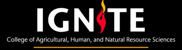 Text: Ignite, Undergraduate Research Program