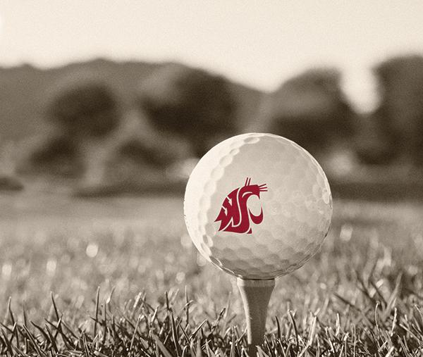 A white golf ball with a crimson WSU logo on a golf tee.