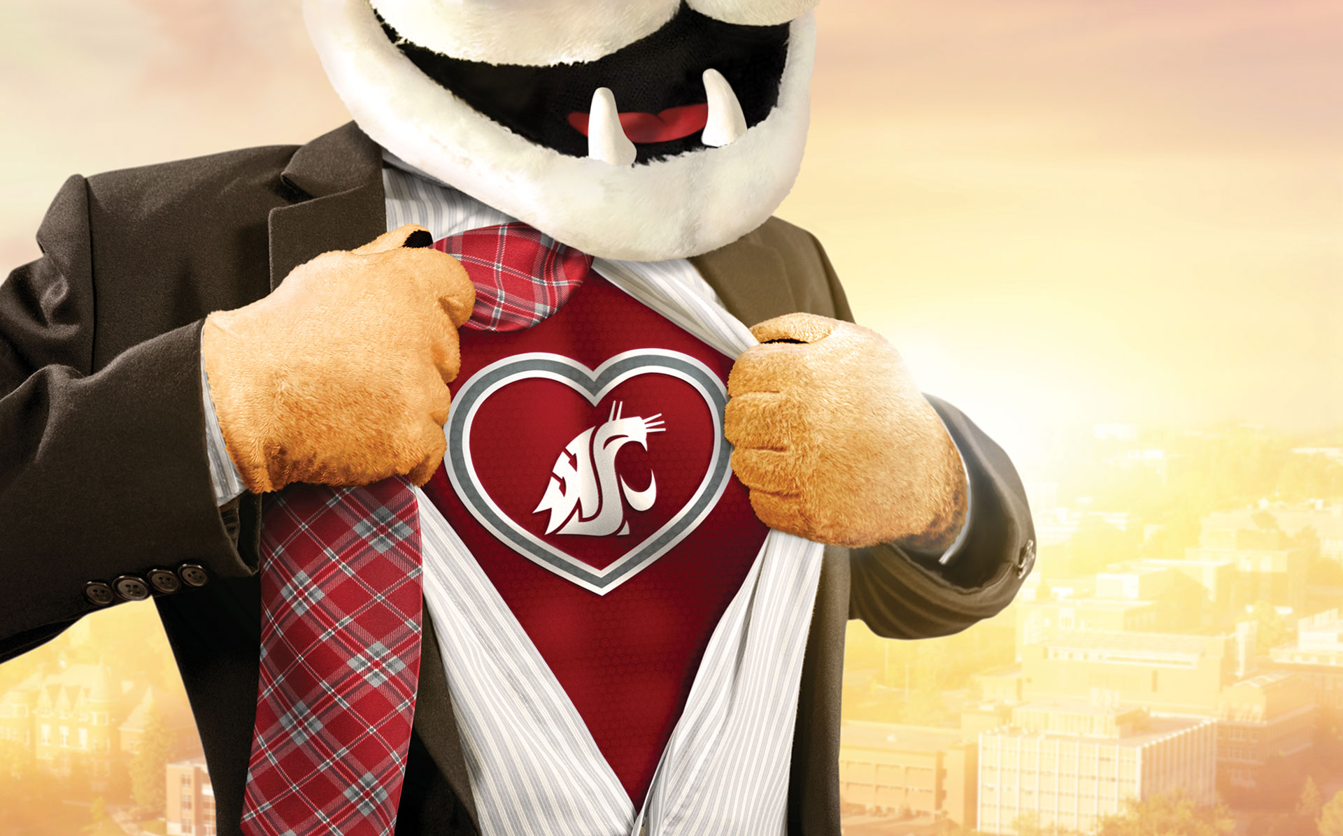 Butch T. Cougar opening his suit like superman revealing a crimson shirt and the WSU logo within a heart.