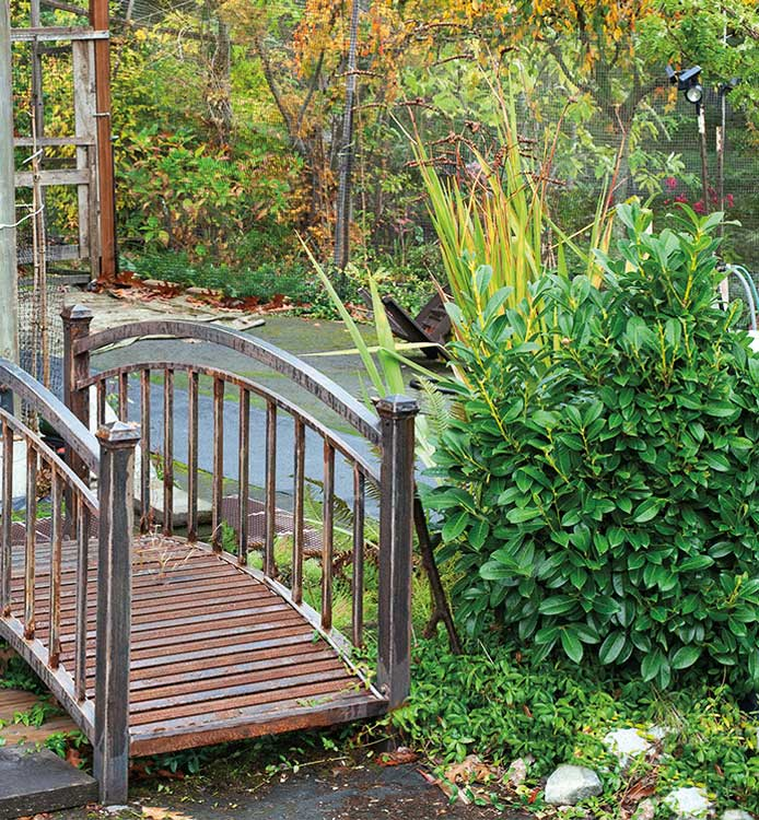 A small bridge in a garden.