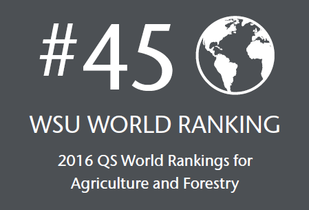 #45 WSU World Ranking