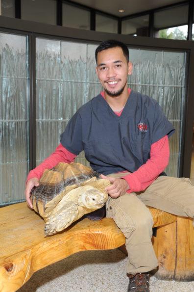 Veterinary student Rian Calugcugan with a tortoise