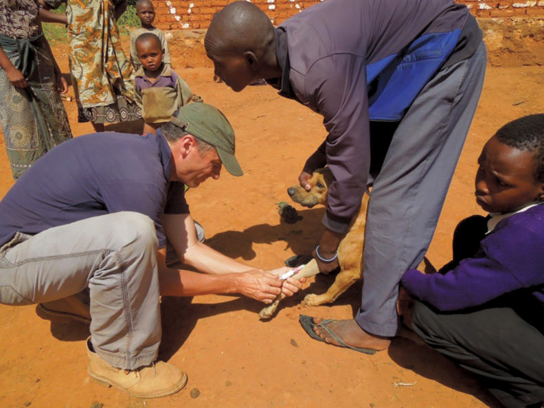 Felix Lankester drawing blood from a dog in Tanzania