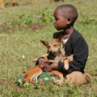 East African boy sitting in the grass with a dog in his lap
