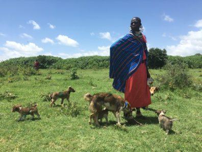 Maasai with dogs