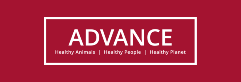 Advance Health Animals Healthy People Healthy Planet