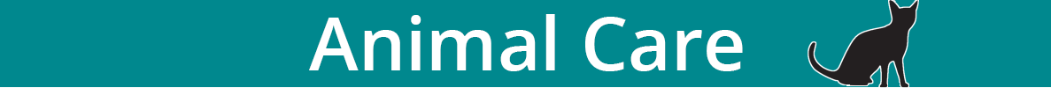 Teal banner that says animal care