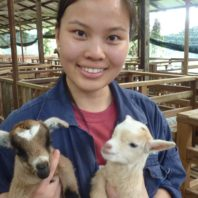 Felicia Lew holding two baby goats
