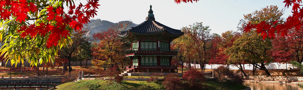Scenic autumn in Korea.