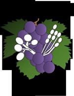 Logo for GDPM 2017
