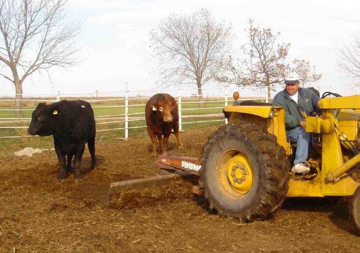 Got Barnyard Runoff? | Animal Agriculture | Washington State