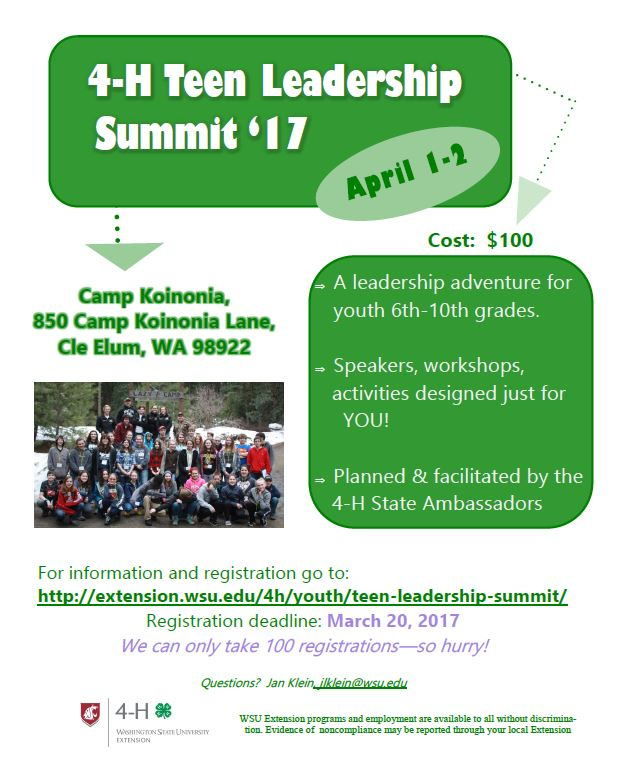 Teen Leadership Summit 4 H Youth Development Program