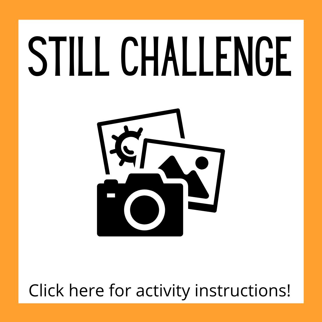 Still Challenge Activity Instructions