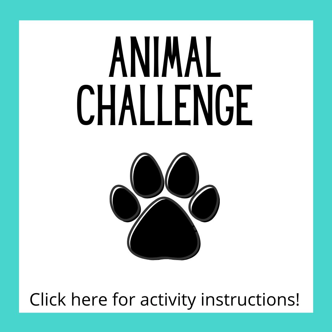 Animal Challenge Activity Instructions
