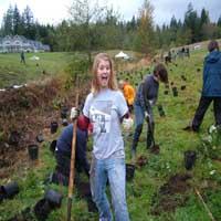 swm planting service