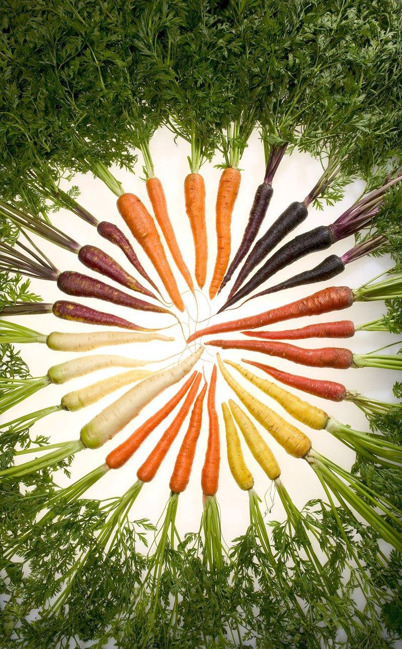 carrot-rainbow