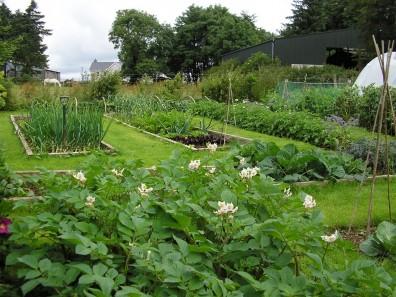 garden-rotation-plots