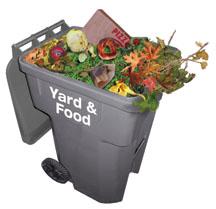 CART_web_Yard_Food