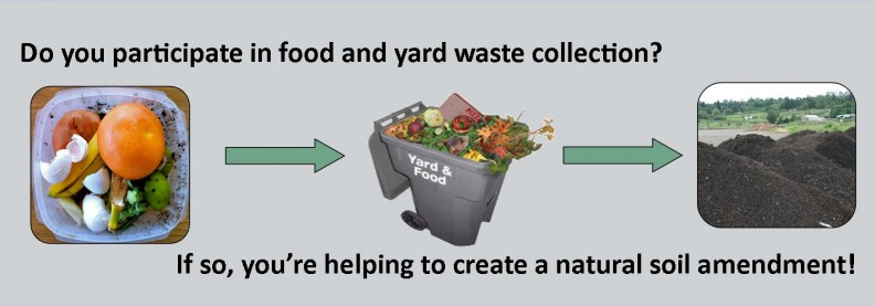Do you participate in food and yard waste collection? If so, you're helping to create a natural soil amendment! Food scraps then put in the food and yard waste collection become compost.