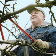 gary moulton pruning