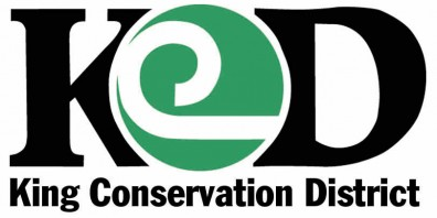 KCD logo color