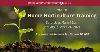Home Horticulture Training occurs Saturdays, 9am-12pm, January 9th - April 24th 2021. Registration is open through December 18th