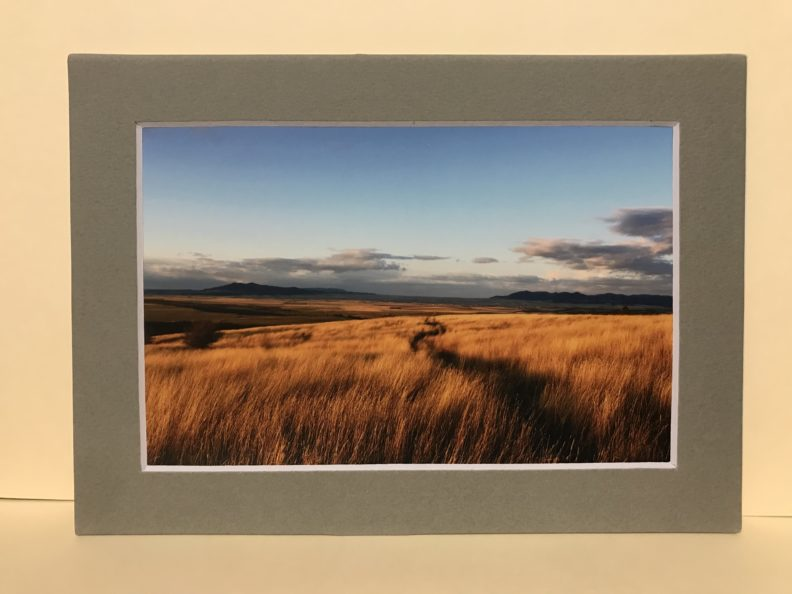 Matted photograph of a Montana wheat field at twilight.
