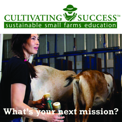Cultivating Success cartoon farmer green logo with woman dairy farmer with black tshirt and side braid facing away toward two goats on the milking stand, looks to the right, open mouthed, while holding milking machine inflations