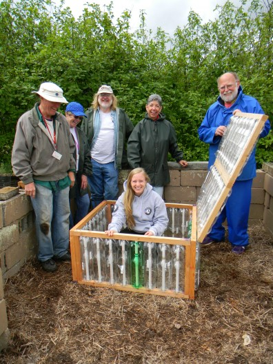 Cold frame for growing vegetables made out of soda bottles.