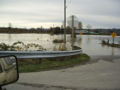 flooding Snoqualmie Valley near Duvall