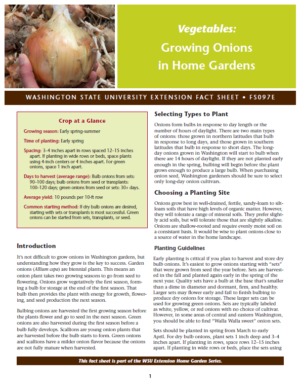 Growing Onions in Home Gardens, FS097E