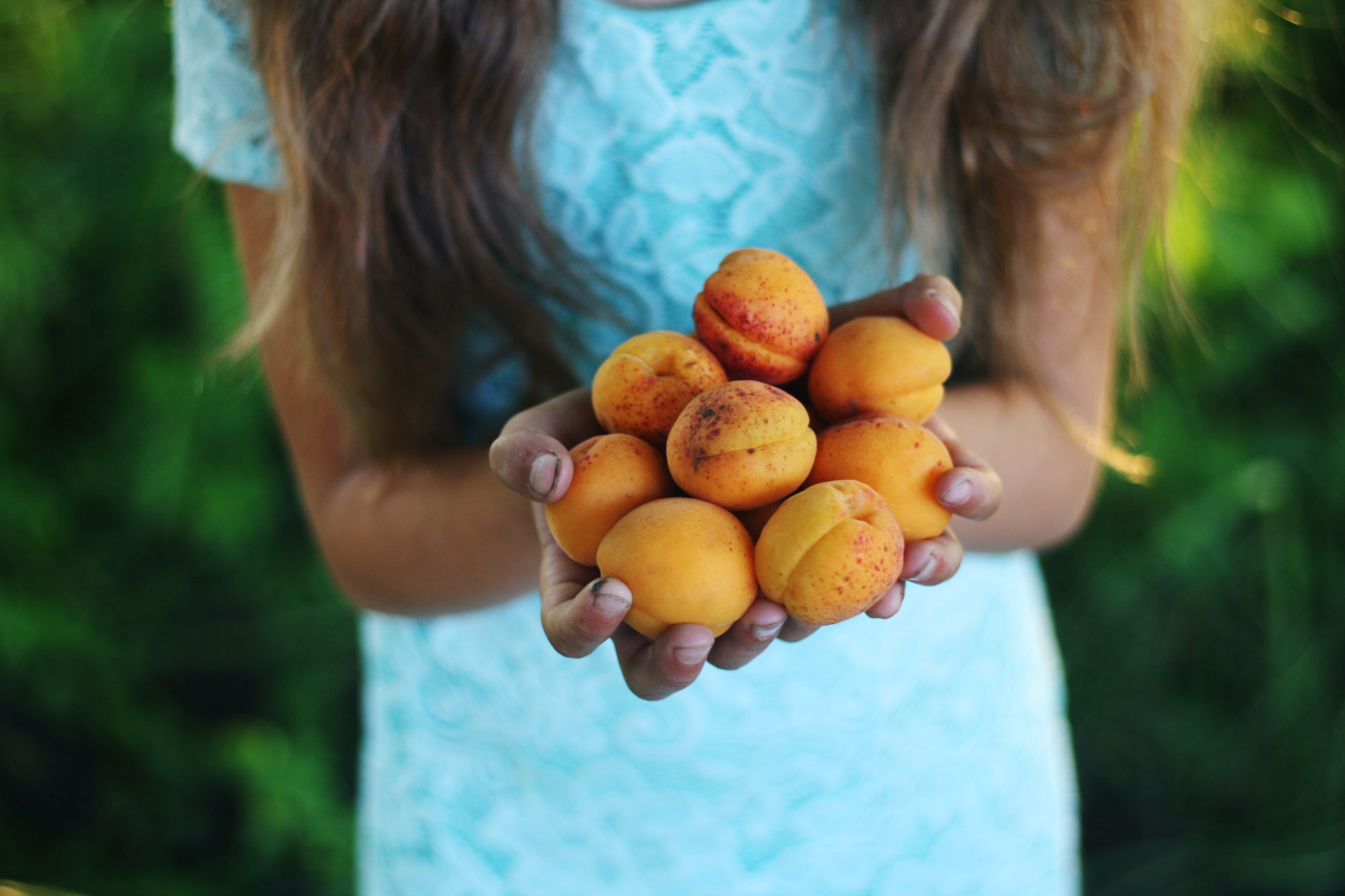 Girl with hands full of peaches