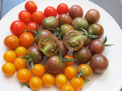 Plate of red, yellow and pinkish green cherry tomatoes
