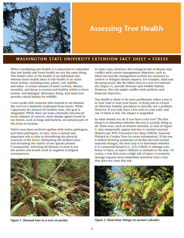 Assessing Tree Health, FS055E brochure cover