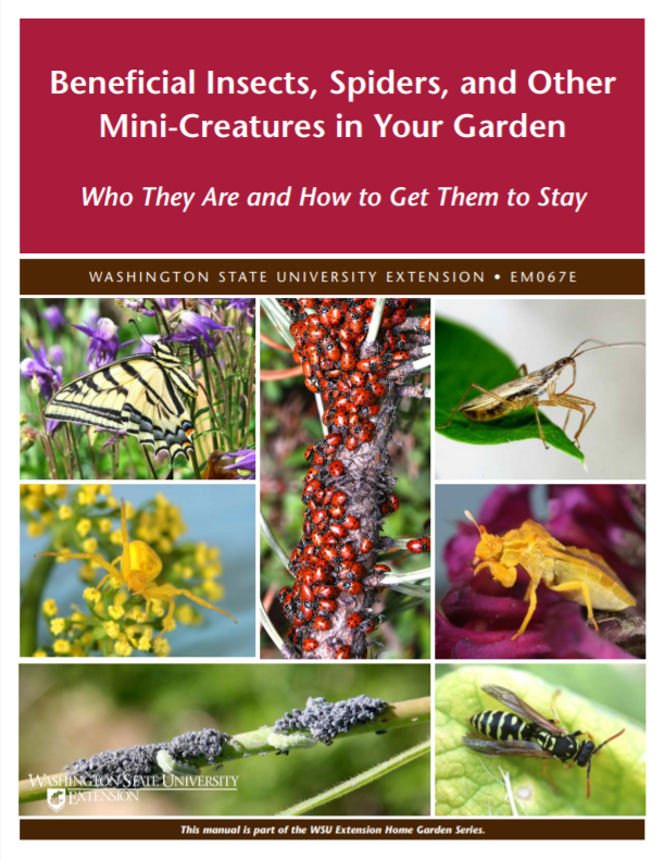 Beneficial Insects, Spiders, and Mites in Your Garden-Who they are and how to get them to stay (Home Garden Series), EM067E brochure cover snip