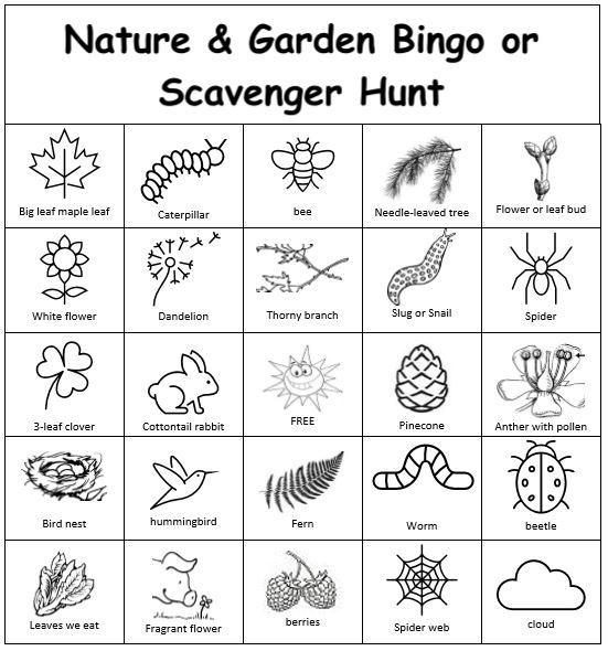 Nature and Garden Bingo or Scavenger Hunt card