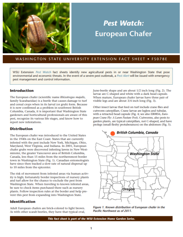 Pest Watch-European Chafer (Home Garden Series), FS078E brochure cover